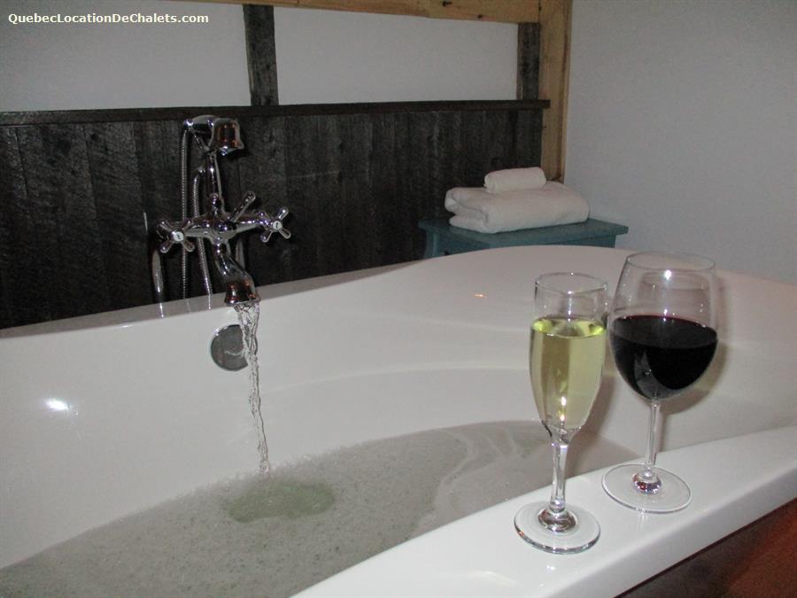 cottage rental Saguenay-Lac-St-Jean, Saint-Fulgence (pic-11)