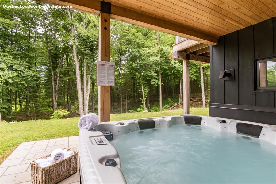cottage rental Laurentides, Mont-Tremblant (pic-13)