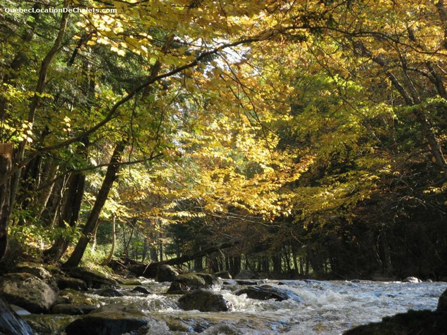 chalet à louer Estrie/Cantons-de-l'est, Lac Brome (pic-9)