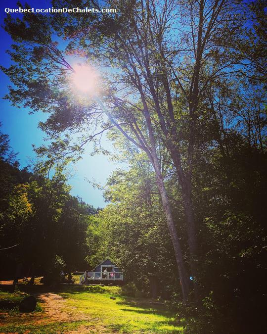 cottage rental Outaouais, Duhamel (pic-7)