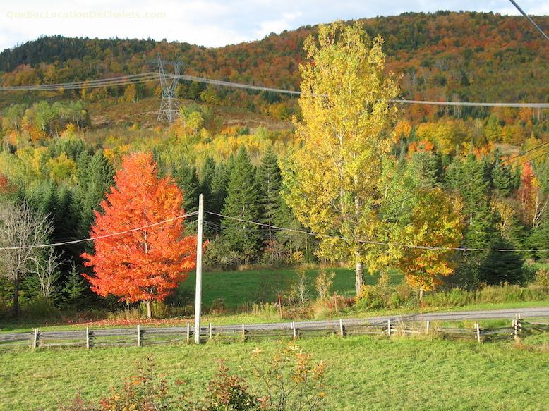 chalet a louer 6686 Québec (photo-11)
