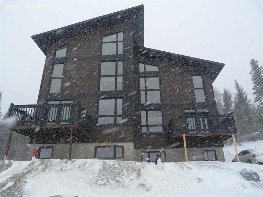 chalet à louer Saguenay-Lac-St-Jean, Monts-Valin (pic-1)