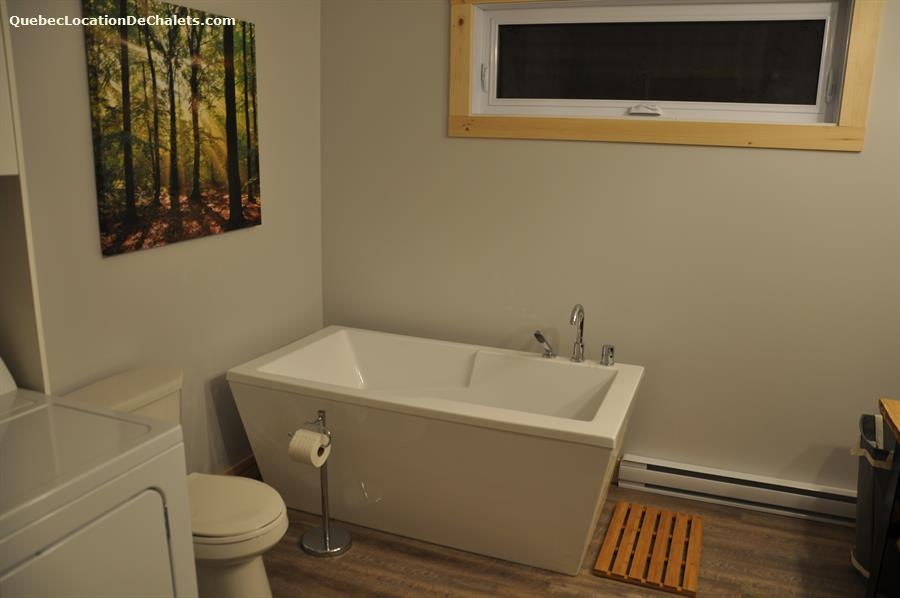 chalet a louer 8595 Mauricie (photo-8)