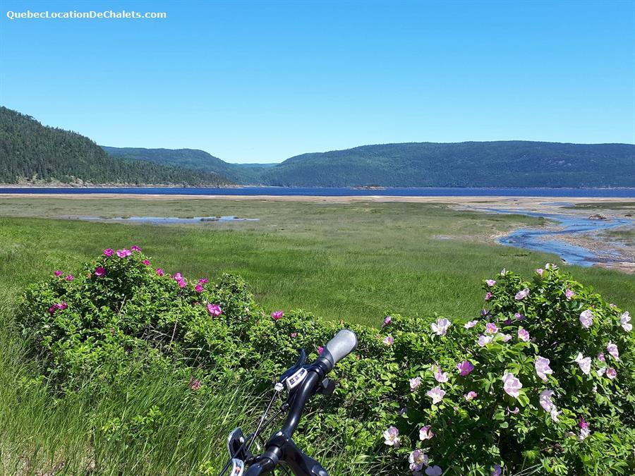 chalet à louer Saguenay-Lac-St-Jean, L'Anse-Saint-Jean (pic-4)