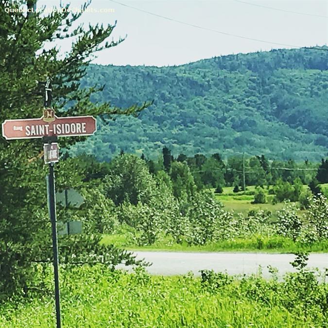 chalet à louer Saguenay-Lac-St-Jean, Hébertville (pic-9)