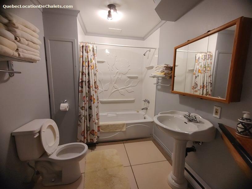 cottage rental Lanaudière, Saint-Zénon (pic-8)