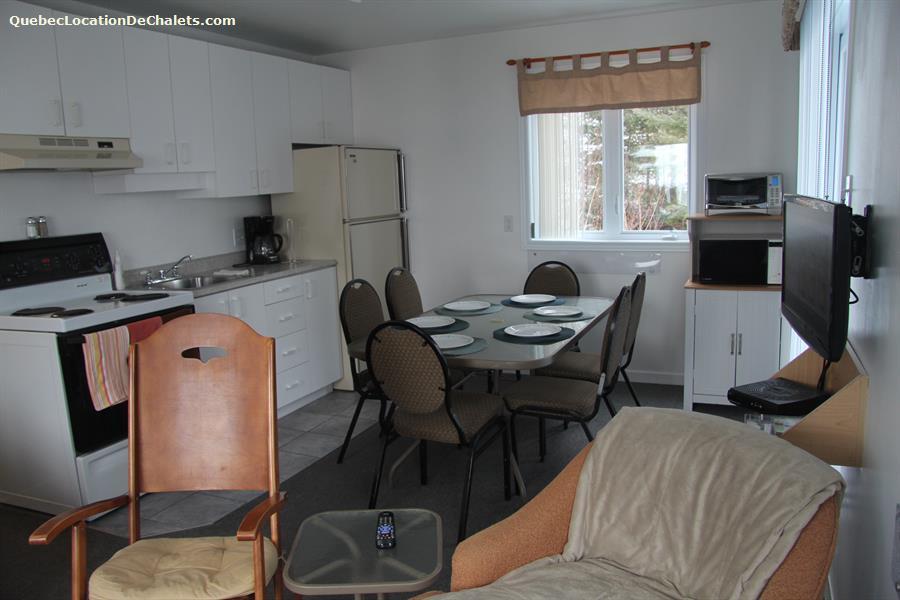 cottage rental Saguenay-Lac-St-Jean, La Baie (pic-8)