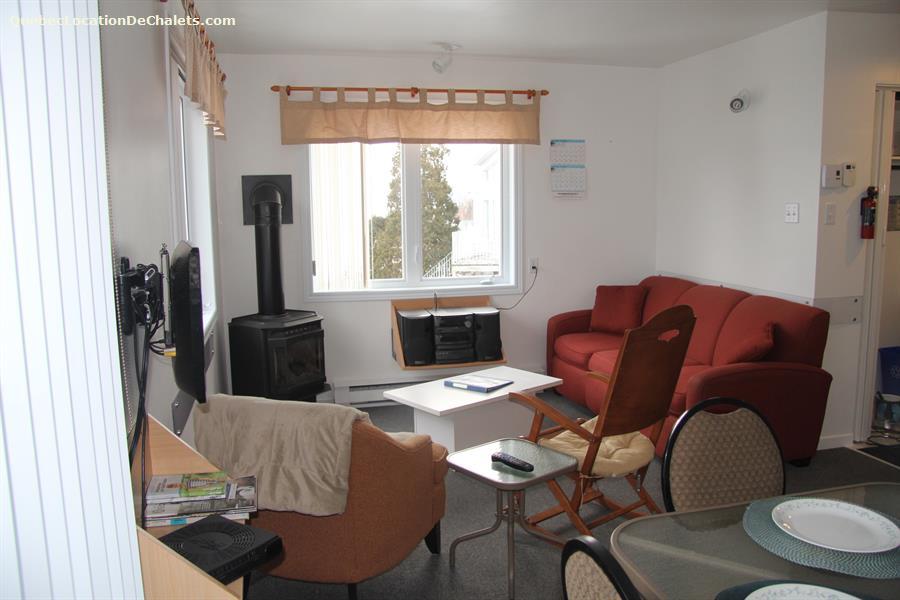 cottage rental Saguenay-Lac-St-Jean, La Baie (pic-9)