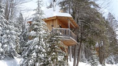 Cottage rental | treehouse