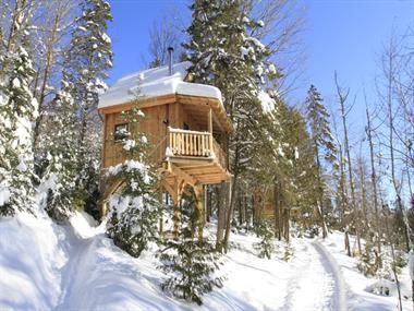 Cottage rental | Caribou cottage