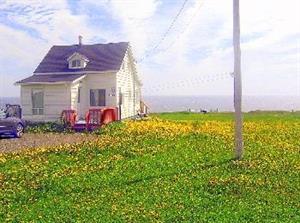cottage rentals Cap-des-Rosiers, Gaspésie
