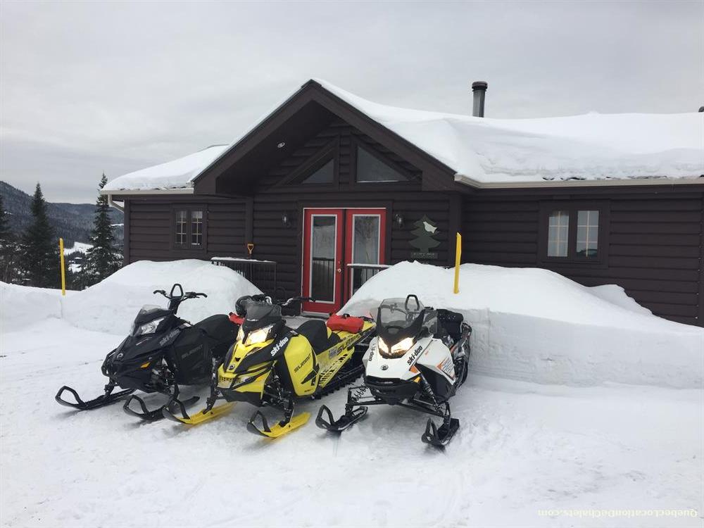 cottage rental Saguenay-Lac-St-Jean, Saint-David-De-Falardeau (pic-8)