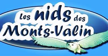 chalets ou condos de ski Saint-David-De-Falardeau, Saguenay-Lac-St-Jean