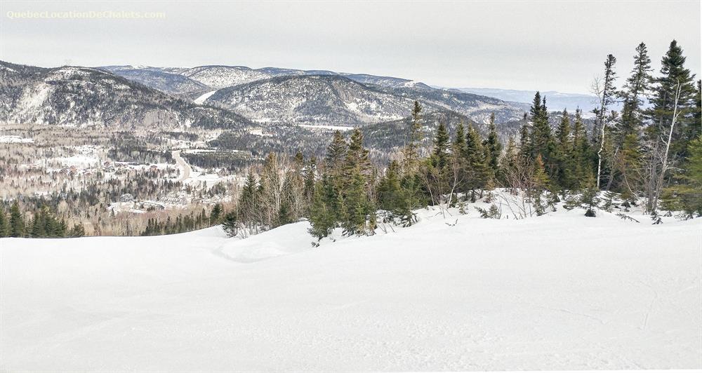 chalet à louer Saguenay-Lac-St-Jean, L'Anse-Saint-Jean (pic-14)
