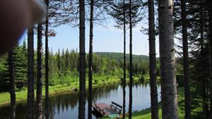 chalets à louer bord de l'eau Sainte-Rose-du-Nord, Saguenay-Lac-St-Jean