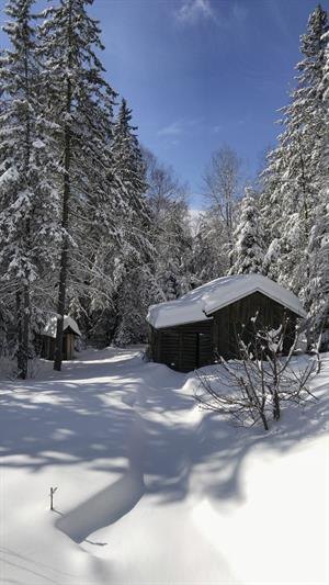 cottage rentals L'Ascension, Laurentides