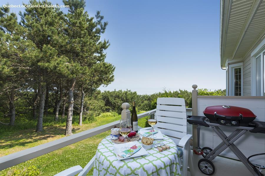 cottage rental Charlevoix, La Malbaie- Cap-a-l'aigle (pic-5)